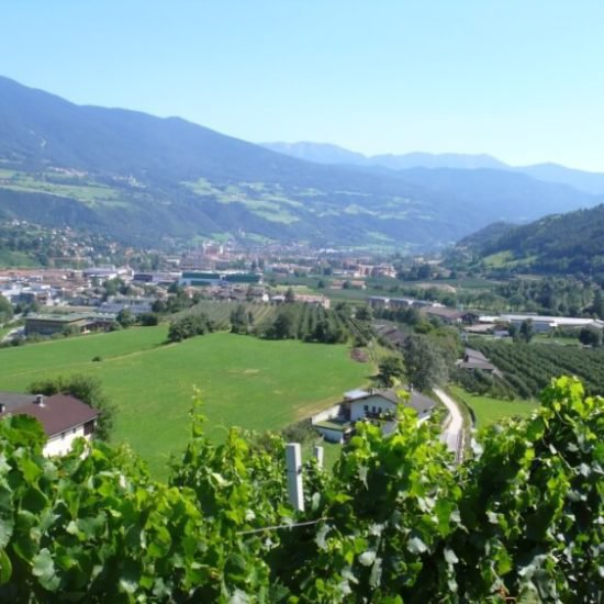 impressionen-vom-sieberlechnerhof-suedtirol-luesen-brixen-12
